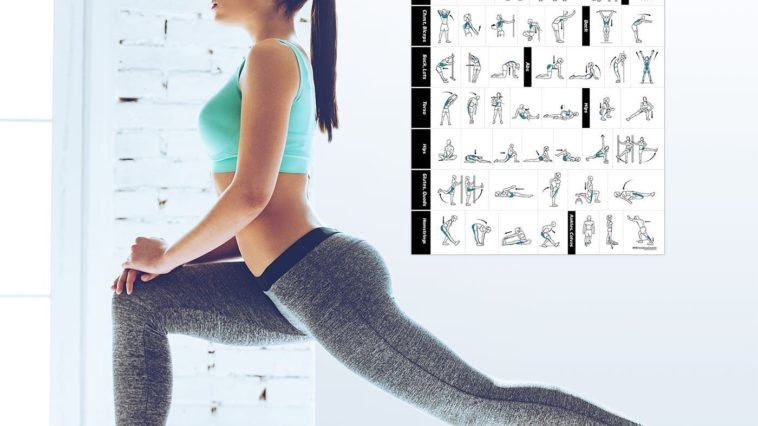 71pK2BOWDGL. SL1400 758x426 - The Best 17 Home Gym Posters to Motivate You!